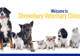 Shrewsbury Veterinary Clinic Small Business Website